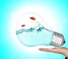 lamp-2247538_1280